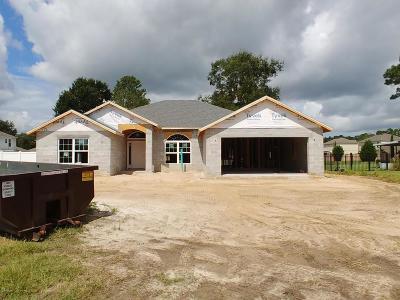 Ocala Single Family Home For Sale: 2720 SE 46th Ave Avenue