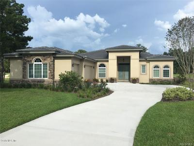 Citrus County Single Family Home For Sale: 3116 W Shadow Creek Loop