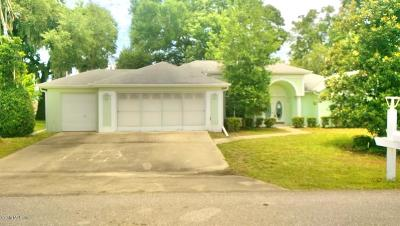 Lake County, Marion County Single Family Home For Sale: 5181 NW 19th Place
