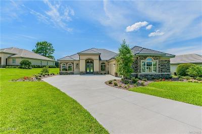 Citrus County Single Family Home For Sale: 3131 Shadow Creek Loop Loop