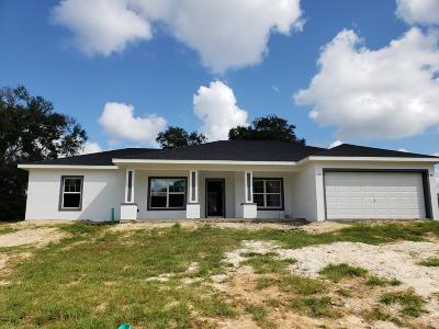 Ocala Single Family Home For Sale: 11 NW 42 Place