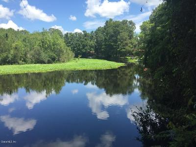Citrus County Residential Lots & Land For Sale: 12802 N Edgewater Drive