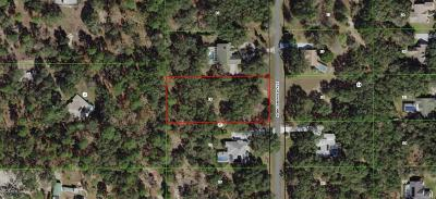 Citrus County Residential Lots & Land For Sale: 162 N Indianapolis Avenue