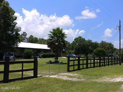 Dunnellon Single Family Home For Sale: 11074 N Wahoo Trl Trail