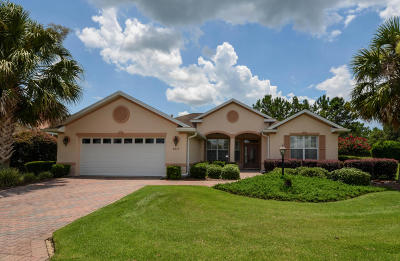 Ocala Single Family Home For Sale: 8615 SW 82nd Terrace