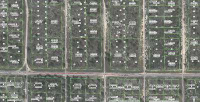 Hawthorne FL Residential Lots & Land For Sale: $2,800