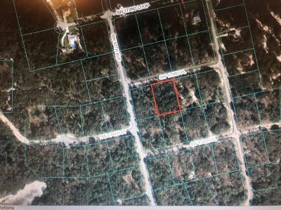 Ocala Residential Lots & Land For Sale: SW 173rd Place