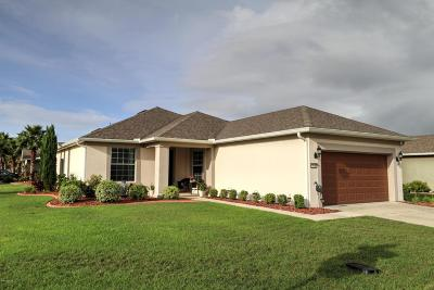 Ocala Single Family Home For Sale: 9090 SW 73rd Lane
