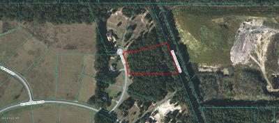 Ocala Residential Lots & Land For Sale: NE 28th Avenue
