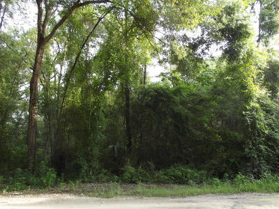 Dunnellon Residential Lots & Land For Sale: SW St Patrick Drive