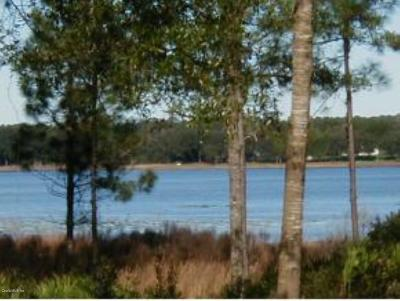 Dunnellon Residential Lots & Land For Sale: Lot 12 SW Papaya Ln