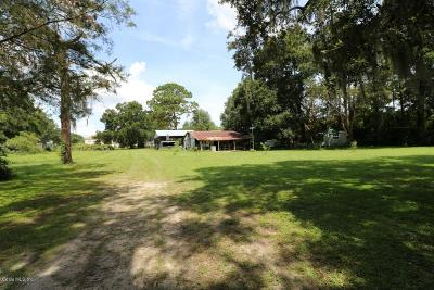 Ocala Farm For Sale: 4300 SW 43rd Court