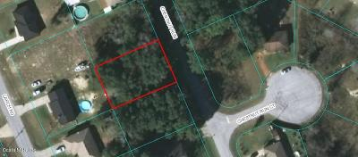 Slvr Spgs Sh N, Slvr Spgs Sh E, Slvr Spgs Sh S Residential Lots & Land For Sale: Chestnut Run