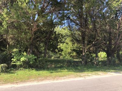 Citrus County Residential Lots & Land For Sale: 7842 W Chassahowitzka Street