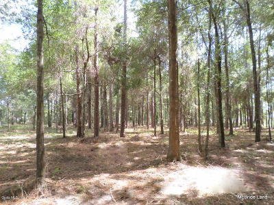 Ocala Residential Lots & Land For Sale: 10640 NW 16 Place