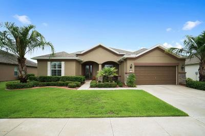 Ocala Single Family Home For Sale: 6710 SW 97th Terrace Road