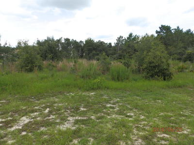 Ocala Residential Lots & Land For Sale: 4386 SW 110th Street