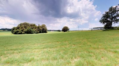 Dunnellon Residential Lots & Land For Sale: SW 1st Street