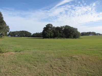 Dunnellon Residential Lots & Land For Sale: SW 3rd Lane