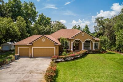 Citrus County Single Family Home For Sale: 6743 N Hartman Path
