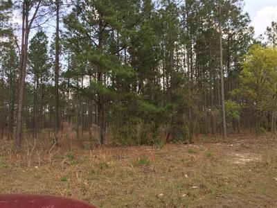 Citrus County Residential Lots & Land For Sale: 10923 N N Robert Dean Way Way