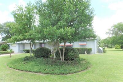 Pine Run Estate Single Family Home For Sale: 10061 SW 94th Avenue