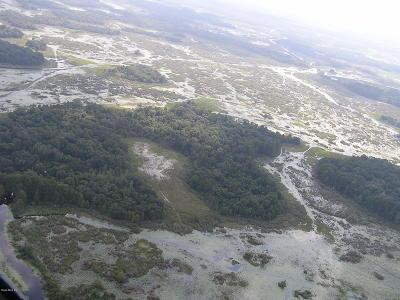 Citrus County Residential Lots & Land For Sale: 4958 Lake Tsala Apopka