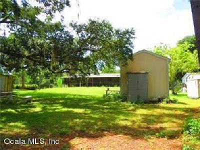 Citrus County Single Family Home For Sale: 4933 E Stokes Ferry Road