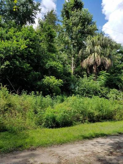 Belleview Residential Lots & Land For Sale: SE 133 Place