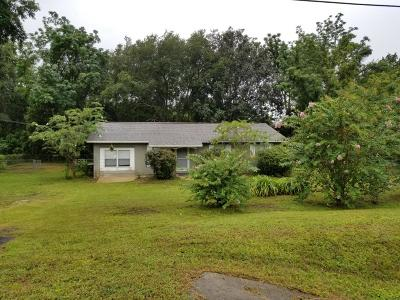 Belleview Single Family Home For Sale: 4262 SE Hwy 484