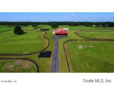 Ocala Farm For Sale: 12340 NW 35th Street
