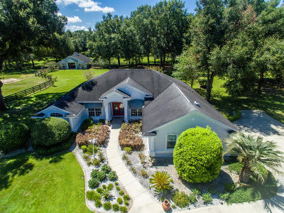 Ocala Farm For Sale: 6854 NW 12th Street