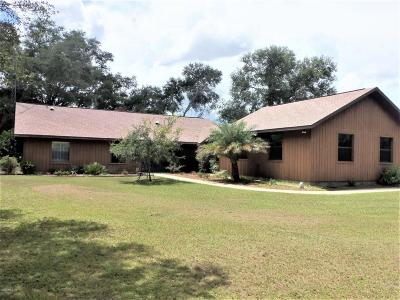 Dunnellon Single Family Home For Sale: 10980 SW 128 Avenue