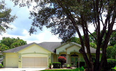 Dunnellon Single Family Home For Sale: 19690 SW 88th Loop