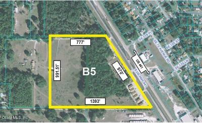 Belleview Residential Lots & Land For Sale: 12110 S Highway 441