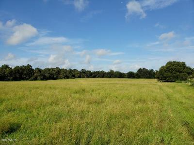 Summerfield, Summerfield Fl Residential Lots & Land For Sale: 60acres SE Hwy 475a (Aka 145th St)
