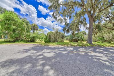Ocala Residential Lots & Land For Sale: SE 9 Avenue #lot 2
