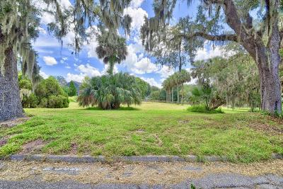 Ocala Residential Lots & Land For Sale: SE 9 Avenue #3