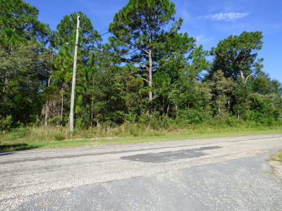 Citrus County Residential Lots & Land For Sale: 8296 N Dandelion Way