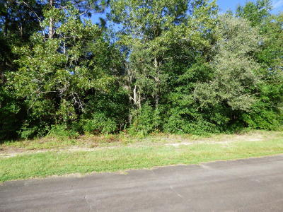 Citrus County Residential Lots & Land For Sale: 9068 N Alpinia Drive
