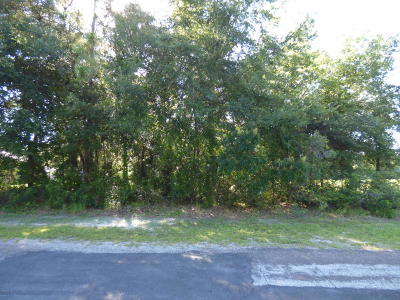 Citrus County Residential Lots & Land For Sale: 9443 N Agatha Drive