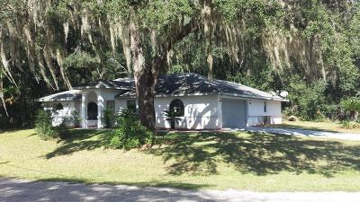 Citrus County Single Family Home For Sale: 9075 N Cortlandt Drive