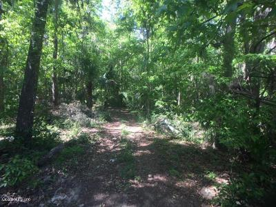 Ocala Residential Lots & Land For Sale: SW 37th Place Road