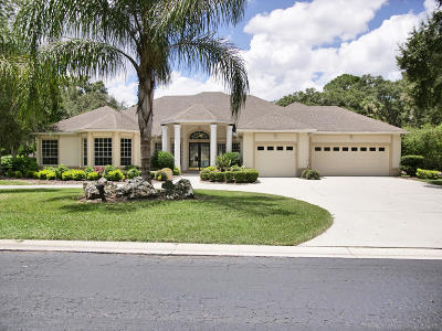 Ocala Single Family Home For Sale: 2272 Laurel Run Drive
