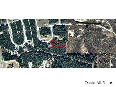 Ocala FL Residential Lots & Land For Sale: $5,400