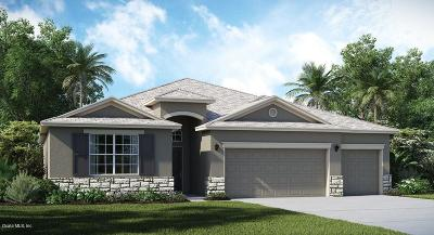 Ocala Single Family Home For Sale: 6081 SW 89th Lane Road