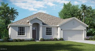 Ocala Single Family Home For Sale: 6067 SW 89th Ln Road