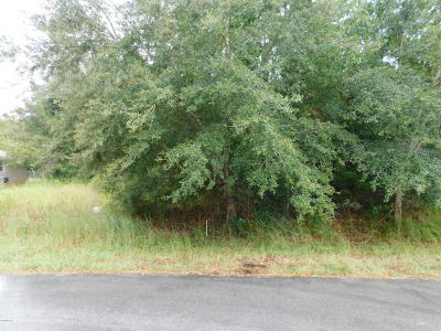 Ocala Residential Lots & Land For Sale: Bahia Pass Place