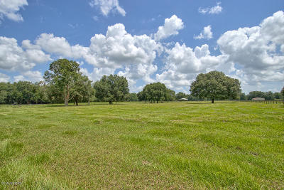 Ocala Residential Lots & Land For Sale: 15123 SW 16th Avenue