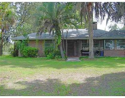 Belleview Single Family Home For Sale: 8258 E Hwy 25